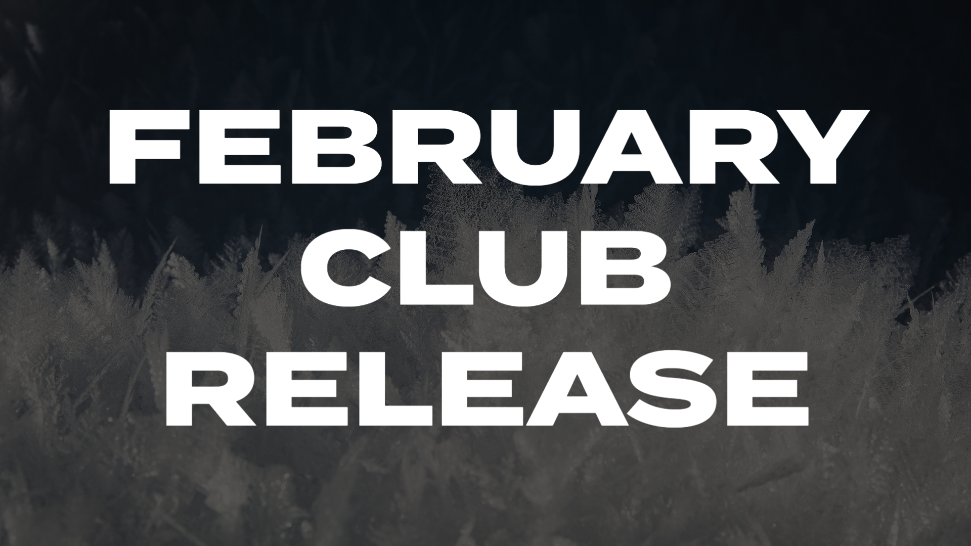 FEBRUARY INFINITY CLUB RELEASE